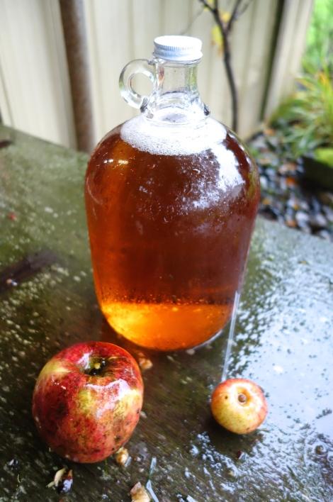 Cider - Bestie